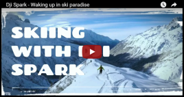 tump skii disper